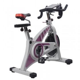 美国RUOSAI动感单车RS5超静音家用健身车健身器材脚踏运动自行车