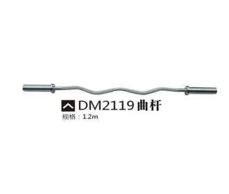 DM2119曲杆